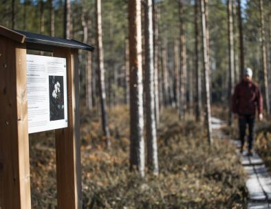Rental cottage vuokramökki naturetrail Saimaa luontopolku